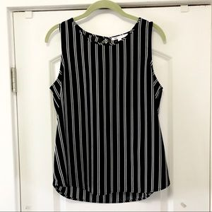Black and White Striped Shell